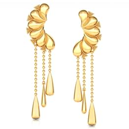 Curves Drop Earrings